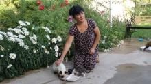 Раненые и забитые: как жительница Душанбе 10 лет спасала животных