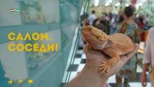 Контактный зоопарк и старая школа «кандакори»: что покажет «Салом, соседи!» на этой неделе?
