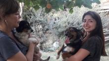 Как таджикские женщины встали на защиту самых беспомощных жителей Душанбе
